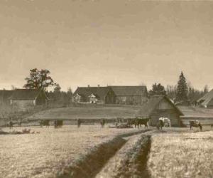Zemnieka sēta Mēdzūlas pagastā  XX gs. sākumā