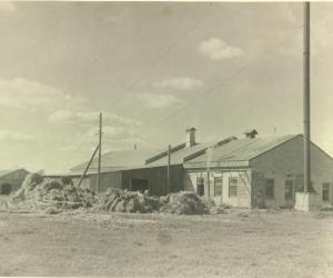 Mārcienas linu fabrika, 1950. gadu sākums